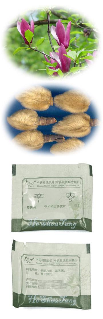 Biond Magnolia Flower (Herba Asari, Blond magnolia flower, Flos Magnoliae, Manchurian wild ginger, Xin yi)