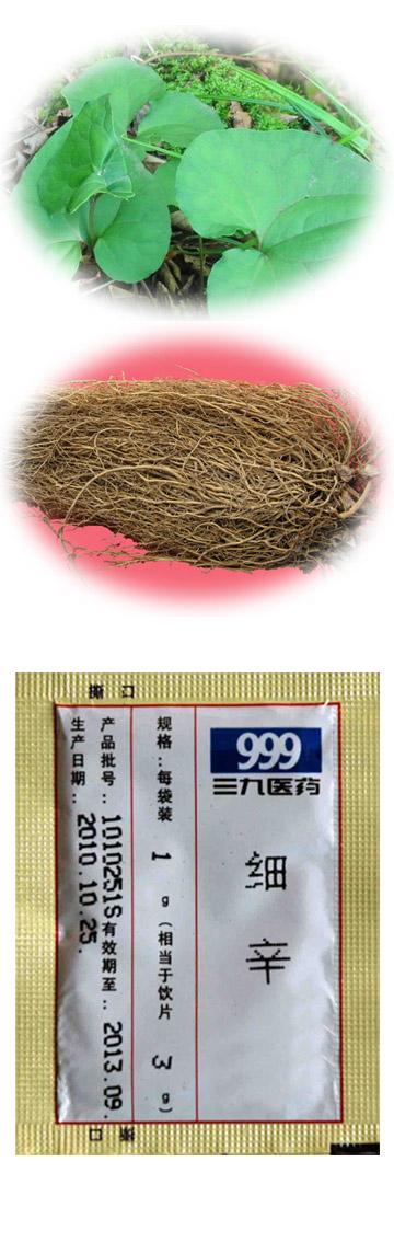 Chinese wild ginger (Manchurian wildginger, Asarum Herb,Asarum heterotropoides Fr. Schmidt var. mandshuricum (Maxim.) Kitag, Herba cum Radice Asari, Herba Asari, Xi xin)