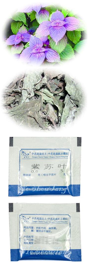 Perilla Leaf (Folium Perillae, Perilla frutescens (L.) Britt., Folium Perillae Frutescentis, Zi su ye )